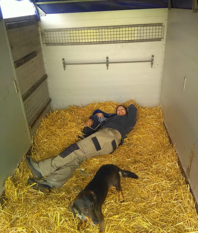 und schlafen im Stroh