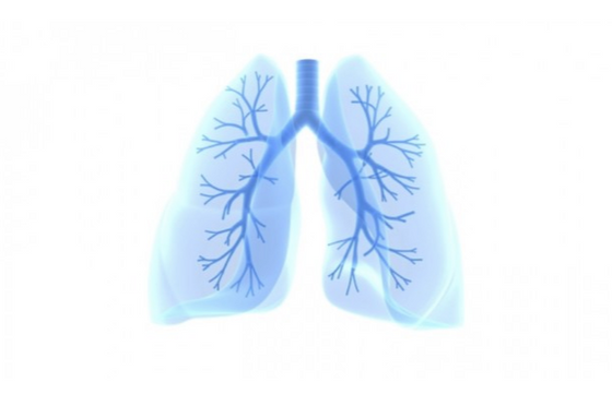 AI and Lung cancer screening