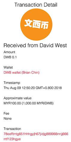 transaction detail - Brian Chin MYR 100.
