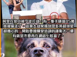【#英超足球討論區📺】護衛犬要1.5萬英鎊一隻?