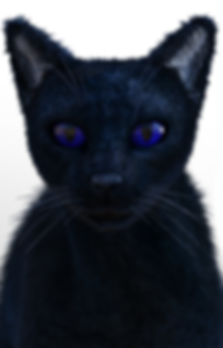 Bes the Cat head shot.png