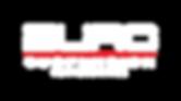 logo Euro Suspenion.png