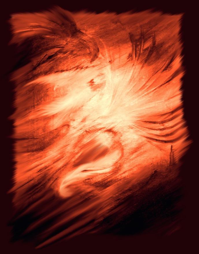 Dove Dancer - sm.jpg