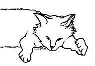 skitsa_cat_11.jpg