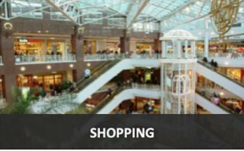 P1 Shopping