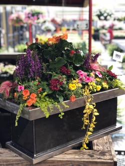 Flower Ranch Planter 2