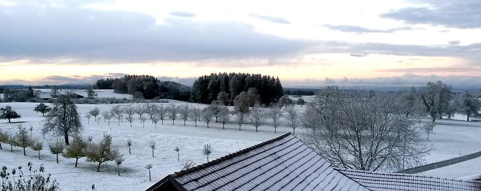 Hof_Winter.jpg