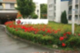 Rosengarten_1.jpg