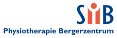Logo_Bruschweiler.png