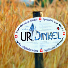 UrDinkel_2.jpg