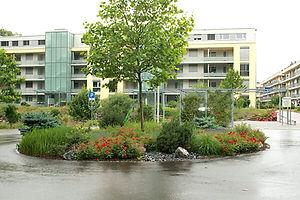 Rosengarten_3.jpg
