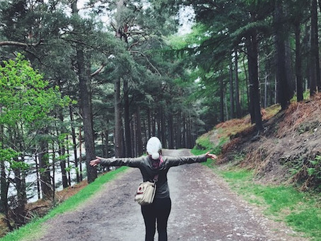 Make Forest Bathing a Walk in the Park