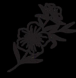 Floral Element 4 .png