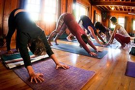 Shannon Yoga Flow.jpg