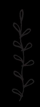 Floral Element 6.png