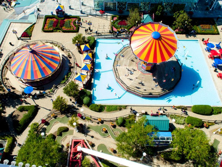 The merry-go-round of life