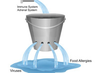 Your Leaky Bucket... When Medicines and Supplements fail to work...