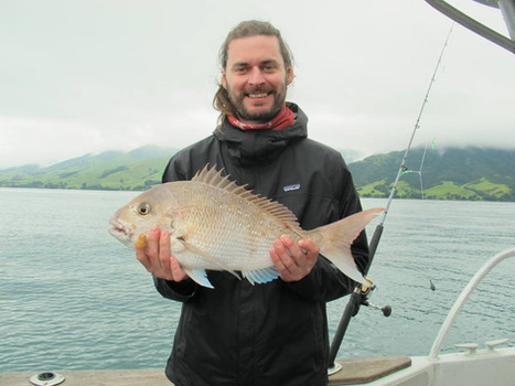 Coromandel's best fishing