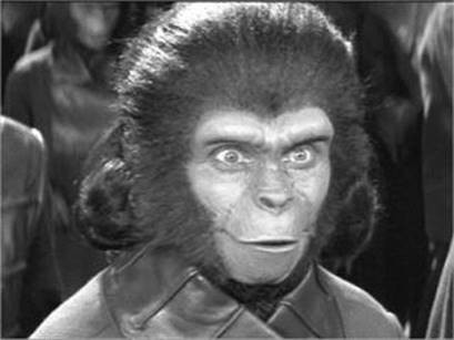 猿の惑星リアル化計画