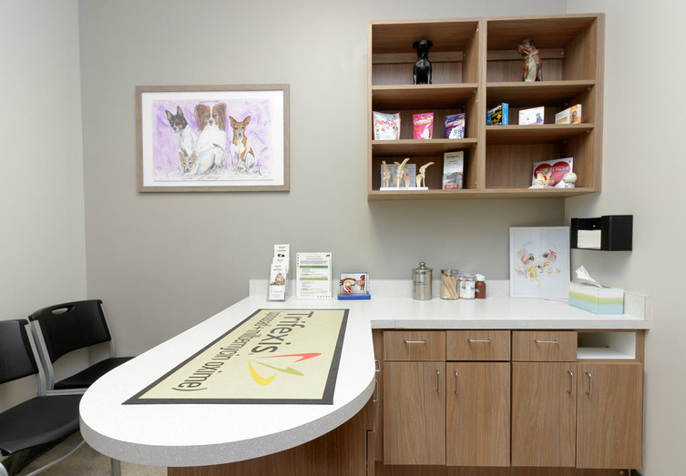 Veterinary Office Space | Xite Realty