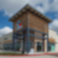 healthcare real estate_veterinary clinic