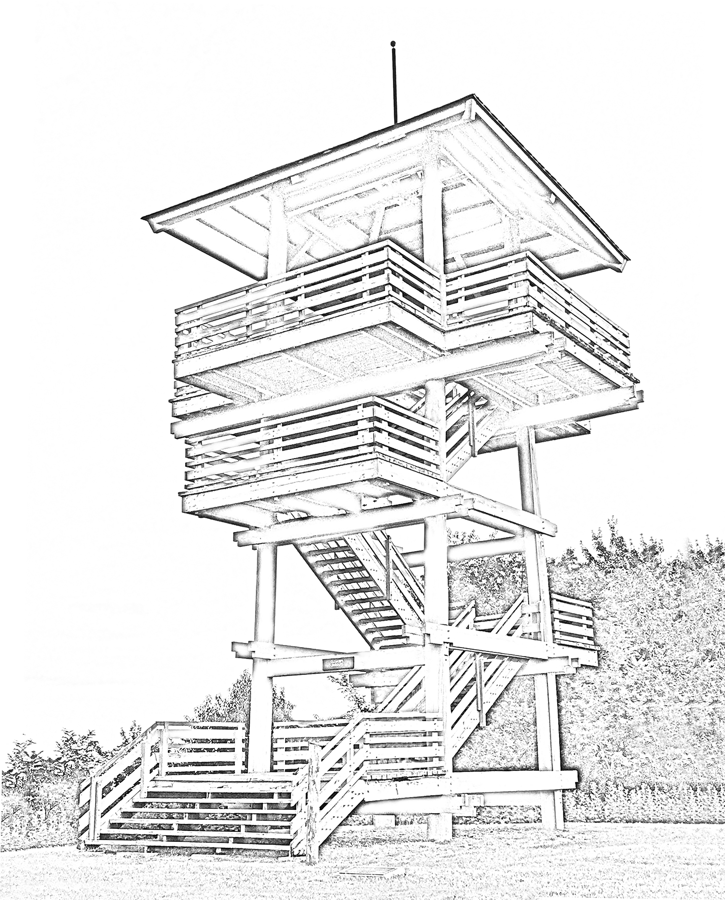 Bolar Lookout Tower