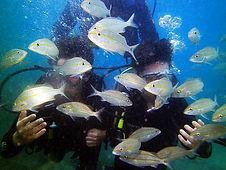Diving Buzios