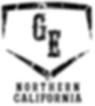 White GE Logo_.jpg