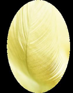 Fondo_niños_-_plumas_amarillas.png