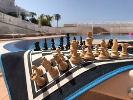 jeu d'échecs de voyage aimanté