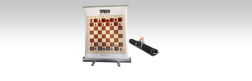 magnetic-chess-set-roll-up-slide.jpg