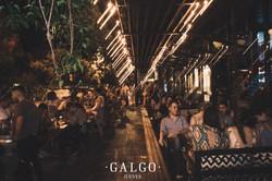 Galgo - Rosario, Argentina