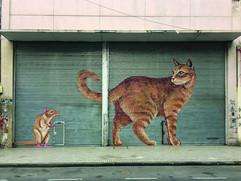 """Proyecto Persiana - """"Gato y Ratón"""" (San Luis 1181)"""