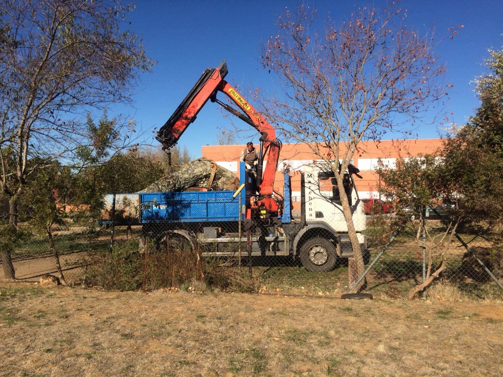 Instalación de troncos.