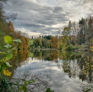 gregor-scheurer_autumn-lake.jpg