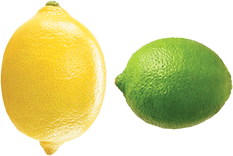 lemon lime logo.png