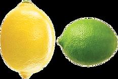 lemon lime logo.png