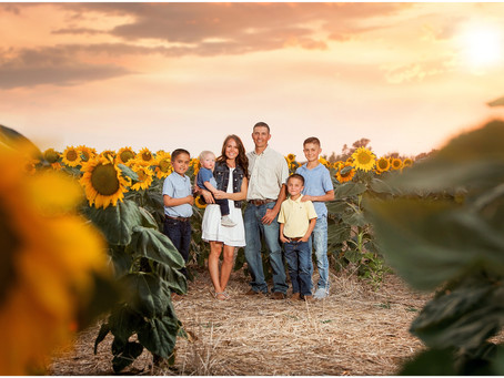 Rupple Family  |  Colorado Sunflower Photography Session