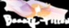 Beautypillow-logoweb-transparant.png