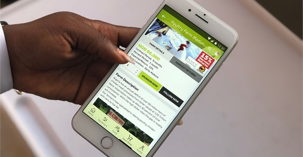 FarmCrowdy launches farmers' digital app to empower farmers