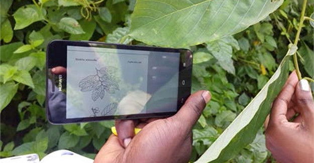 Can a mobile app help East African farmers adapt to climate change?