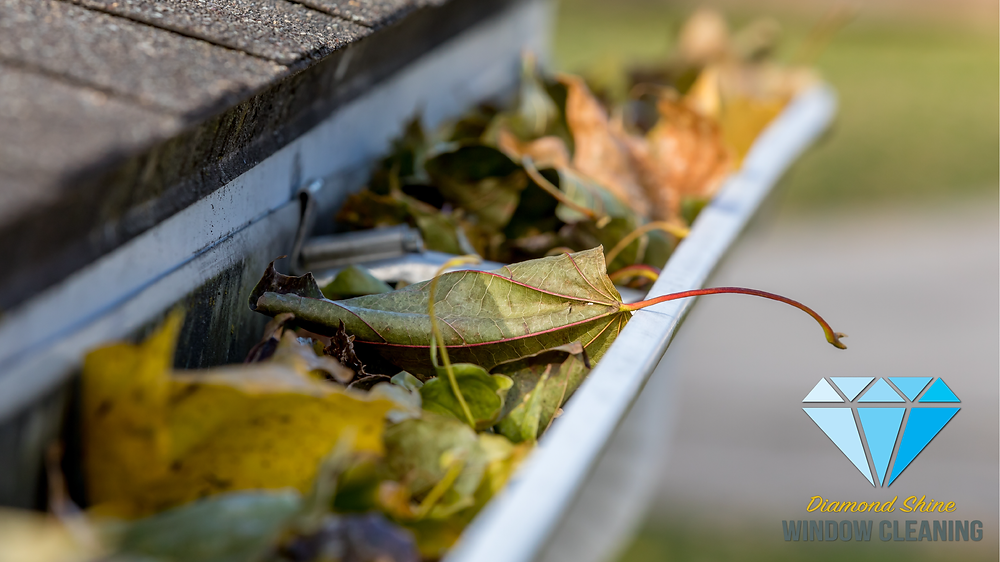 Michigan gutter cleaners