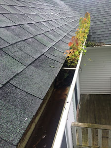 Gutter-Cleaning-Before1.jpg