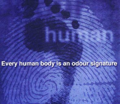 Odour Signature