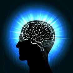 Cognitive Performance