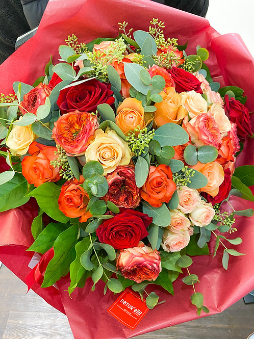 Le multi-roses
