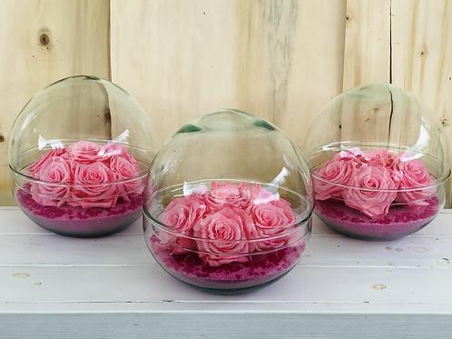 Bulle de roses éternelles fuchsia