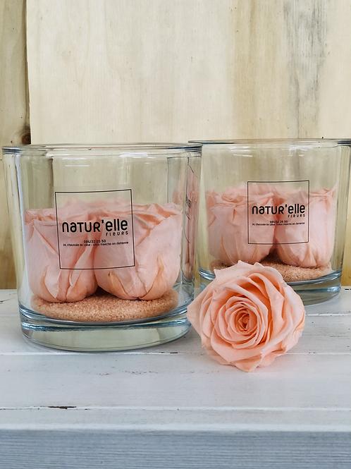 """Roses stabilisées """"Pêche"""""""