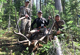 Hunting Guides Cooke City Montana
