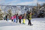 Winter and Spring Activities in Cooke City, Yellowstone